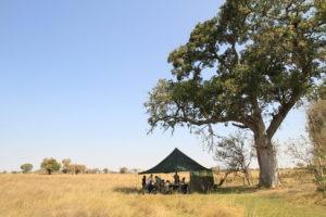 Botswana mobile safari outdoor tent
