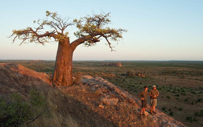 Ecotraining Boabab Landscape 2