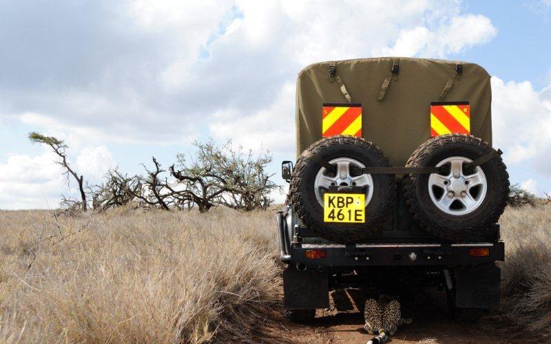 Ecotraining Kenya Leopard behind landrover
