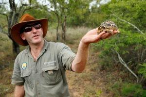 Ecotraining TRainer Turtle