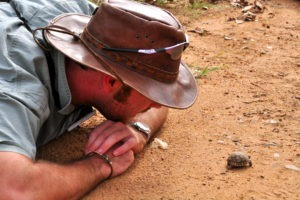 Ecotraining Training TRainer Turtle