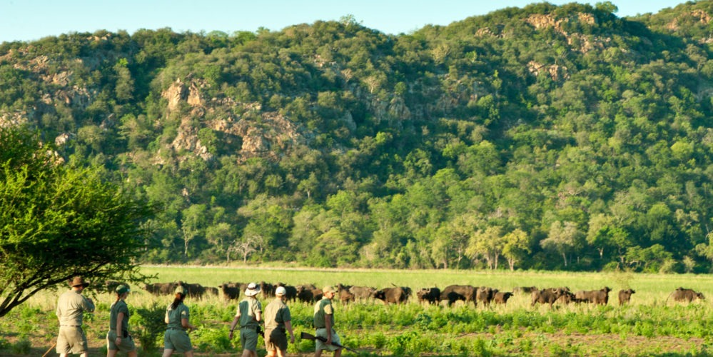 Ecotraining walking makuleke