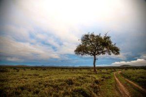 Kenya Borana Nov 2014 Max Melesi 22