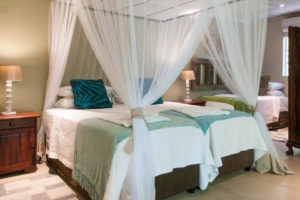 bayete vicfalls twin beds