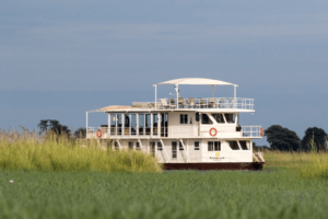 botswana chobe photo boat safari