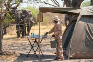 elephant tent khwai staff