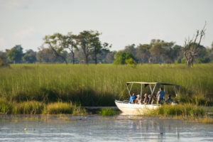 moremi boat okavango