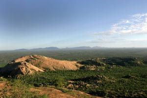 namibia photo safari view