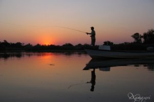 nxamaseri island lodge fishing