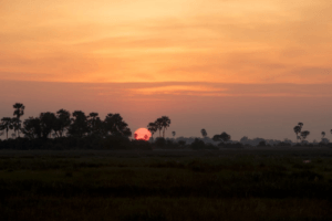 selinda spillway beautiful sunset