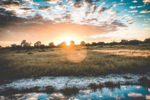 Delta Botswana
