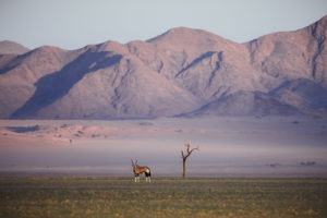 Northern namibia photography workshop jason and emilie