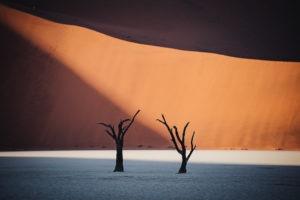 Southern Namibia sossusvlei jason and emilie photography safari