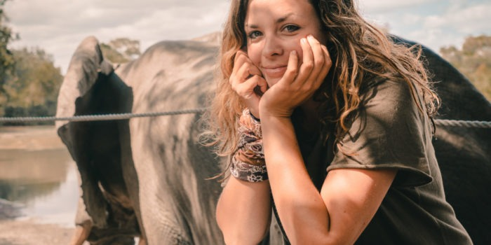 gesa elephant zimbabwe kanga camp