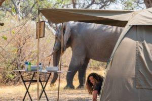 gesa mobile camping tent