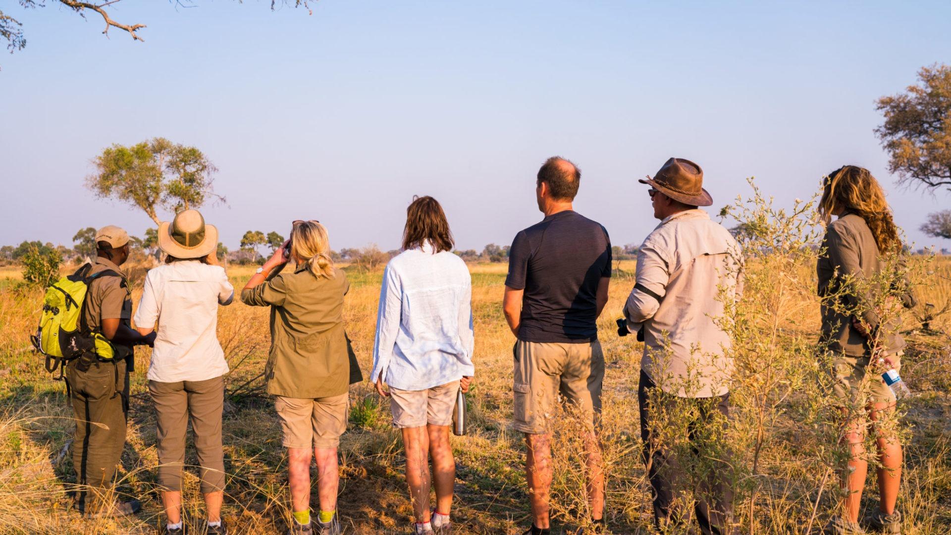 guests walking okavango delta