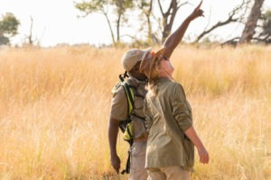guide birding okavango delta