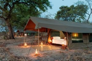 nkozi camp south luangwa tents lanterns