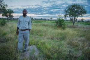 okwa wild expedition safaris