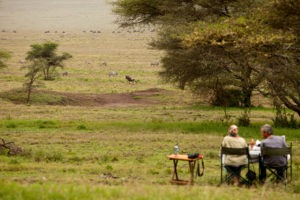 kogatende camp tanzania wildlife