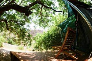 manyara green camp tanzania deck