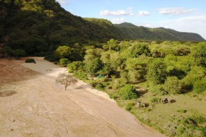 manyara green camp tanzania elephants camp