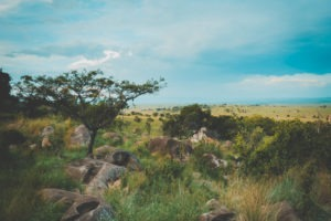 tanzania safaris landscape views