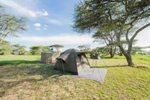 wayo walking camp serengeti tent exterior