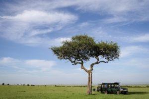 Masai Mara Kenya12