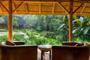 primate lodge kibale lounge view