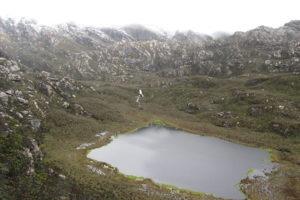 rwenzori trekking uganda bugata 1