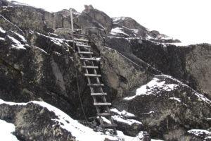 rwenzori trekking uganda ladder