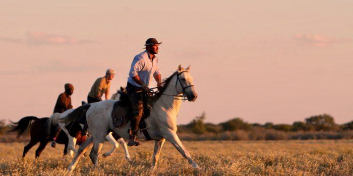 Horse Safari Kalahari 7 2
