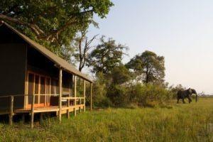 Okavango Delta Accommodation