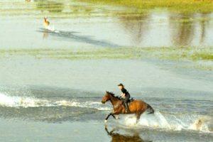 Okavango Delta Canter in Water