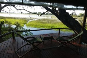 Okavango Delta Tree house