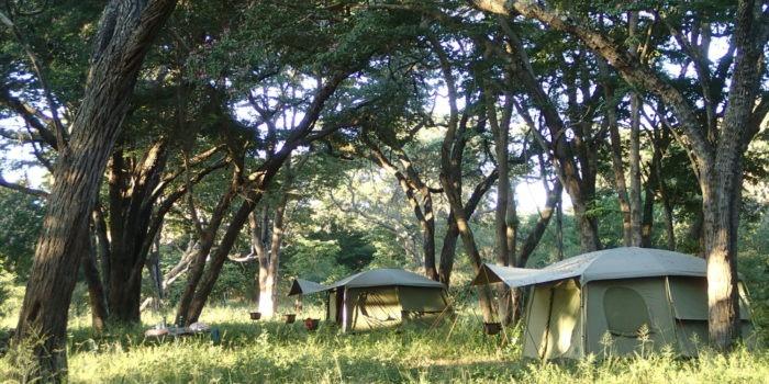 Ride Zimbabwe tents