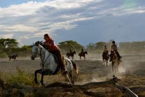 Kilimanjaro Elephant ride 40