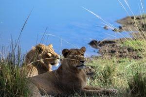 Lisa Blog Sambia SuedafrikaIMG 839515