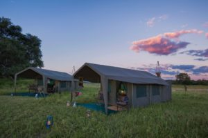 Okavango Expeditions tents outside view mobile