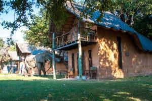 elephant tracks and trail river camp