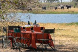 wild expedition safaris botswana lunch elephants