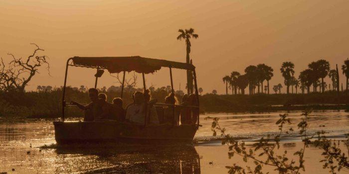 5 Boat Safari 1