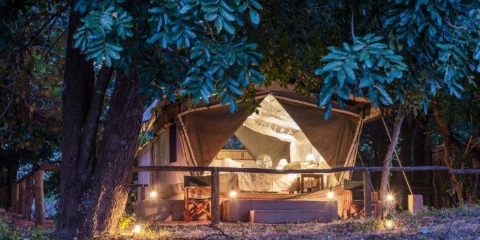 flatdogs camp south luangwa zambia standard tent night
