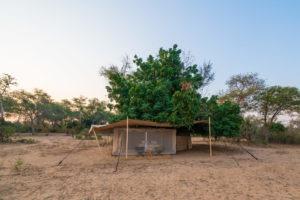 tusk and mane lower zambezi tent outside