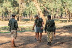 tusk and mane lower zambezi walking safari