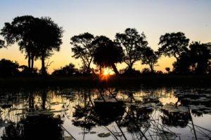 Botswana Kwapa Camp sunset sun