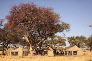 Botswana Mobile Safari camping khwai