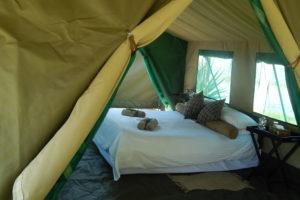 Botswana mobile safari internal tent