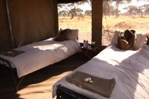 Botswana mobile safari internal tents